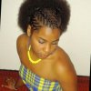 Coiffure afro cheveux courts naturels